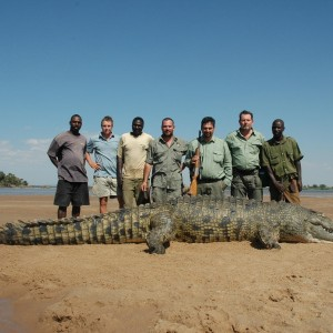Huge 16 and half foot Crocodile hunted in Zimbabwe40 inch Buffalo hunted in