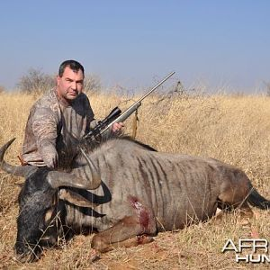 Blue Wildebeast Namibia Hunt
