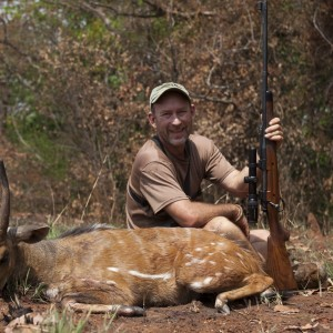Harnessed Bushbuck hunted in CAR