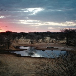 Holstein Hunting Safaris Namibia- Waterhole sunset