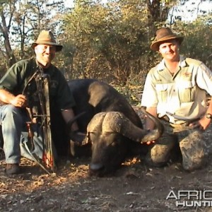 Cape Buffalo Zim taken with Warthog Safaris