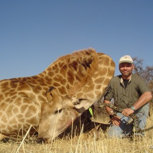 Giraffe with bow, took with Warthog Safaris
