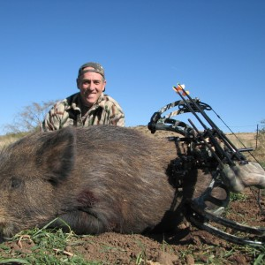 East Cape Feral Boar