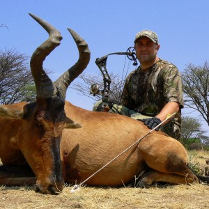 red Hartebeest bowhunted at Ozondjahe Hunting Safaris Namibia