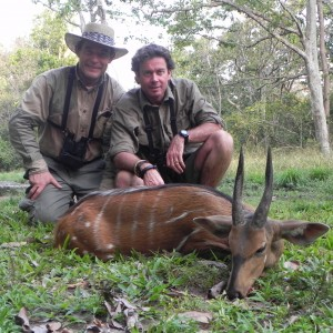 Harnessed Bushbuck hunted in Central Africa with Club Faune