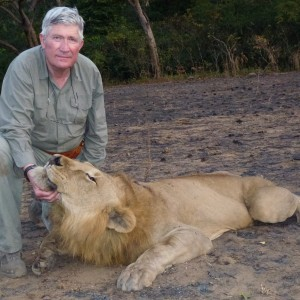 Lion hunted in Central Africa with Club Faune