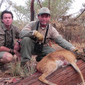 Oribi hunted in Central Africa with Club Faune