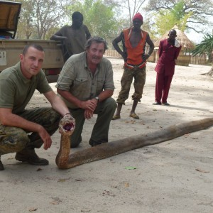 Python hunted in Central Africa with Club Faune