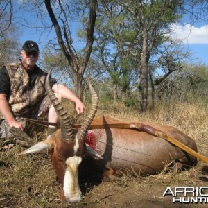 Blesbok with my Longbow