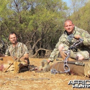 Warthog and Impala