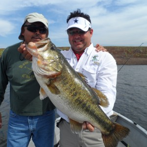 Bass of Sinaloa in Western Mexico
