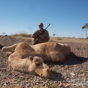 Hunting Camel in the Australian Outback
