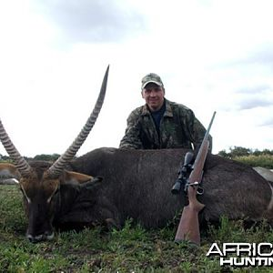 Beautiful Waterbuck hunted in South Africa