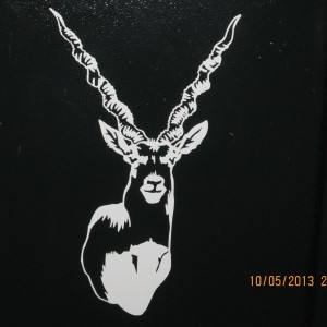 Black Buck Decal Stickers