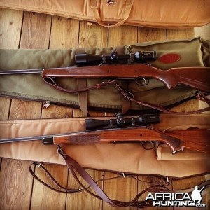 Rifles Ready for Africa