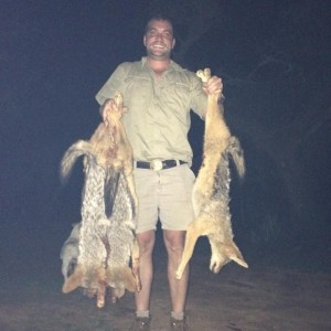 Successful Jackal Hunt