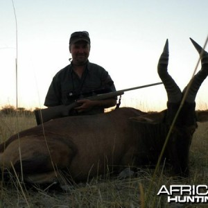 Red Hartebeest hunted at Westfalen Hunting Safaris Namibia