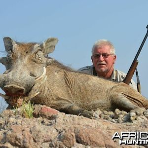 Warthog hunted at Westfalen Hunting Safaris Namibia