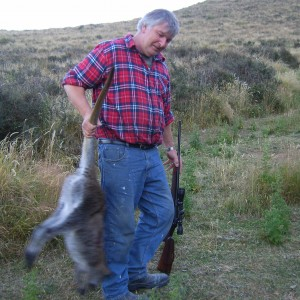 Wallaby hunting - New Zealand
