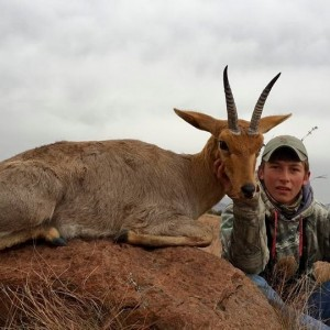 Top class Mountain Reedbuck - 7 Rowland Ward trophies 2015.