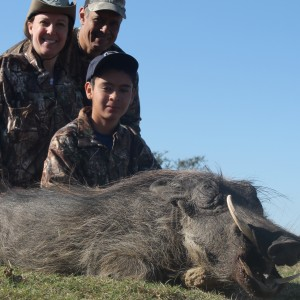 Jonathan's Warthog at Huntershill Safaris