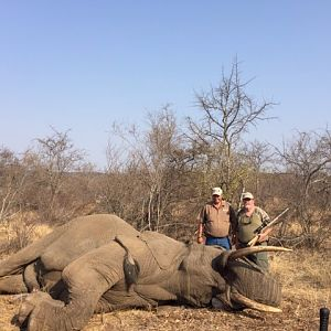 South Africa Hunting Elephant