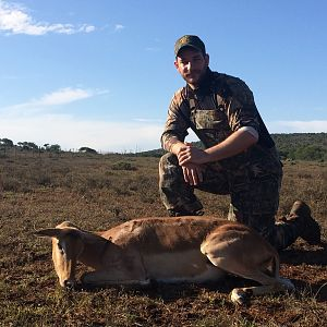 Cull Hunting Impala Ewe South Africa