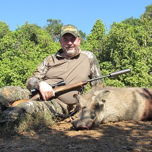 South Africa Warthog Cull Hunting