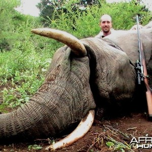 Elephant PAC Hunt in Mozambique