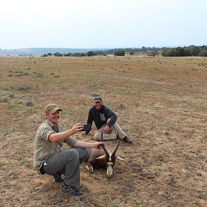 Blesbok Hunting in South Africa