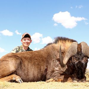 Hunting South Africa Black Wildebeest