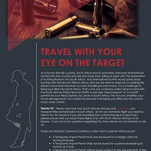 Travel with your eye on the target