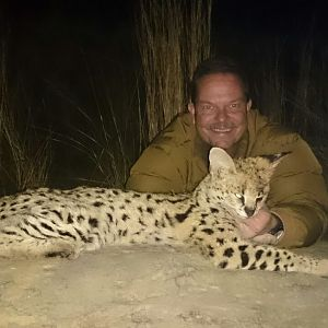 Serval Cat Hunting in South Africa