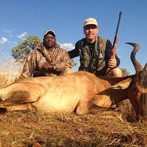 Red Hartebeest Cull Hunt in South Africa