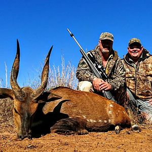 Bushbuck  Hunting South Africa
