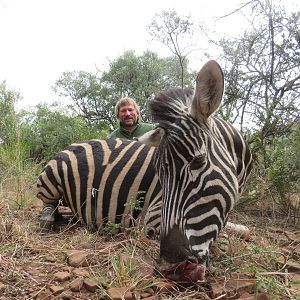 Hunt Zebra in South Africa