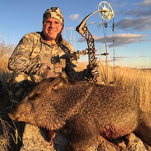 Javelina Bow Hunt