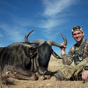 South Africa Blue Wildebeest Hunting