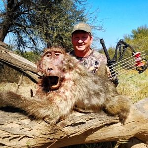 South Africa Baboon Bow Hunting