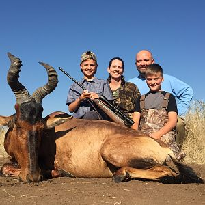 Red Hartebeest Hunt South Africa