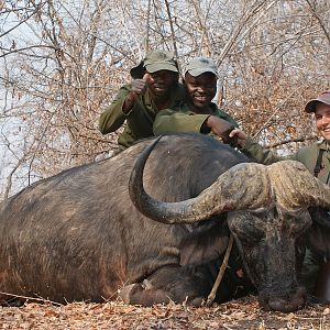 Cape Buffalo Hunt Zimbabwe