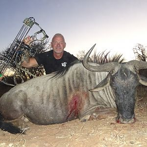 Blue Wildebeest Bow Hunting South Africa