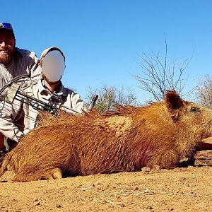 South Africa Boar Hunt