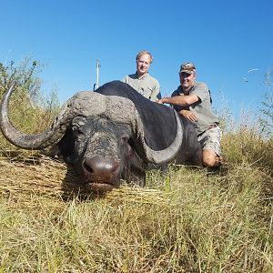 Cape Buffalo Hunt