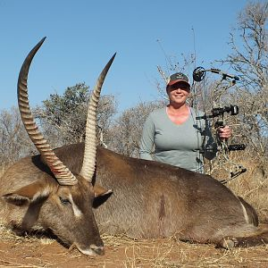 South Africa Bow Hunt Waterbuck