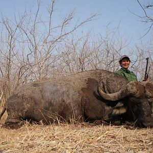 Zimbabwe Hunting Cape Buffalo