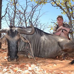 Blue Wildebeest Bow Hunt South Africa