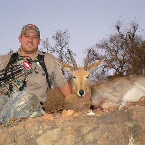 Mountain Reedbuck Leeuop Safaris