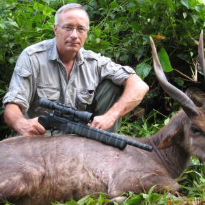 Western Forest Sitatunga hunted in Cameroon