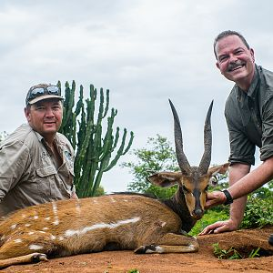 "15 1/2"" with 6"" bases Nile Bushbuck Hunt in Uganda"